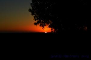 The sunset